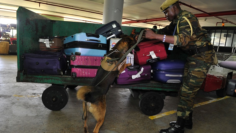TO GO WITH AFP STORY BY PETER MARTELL Kenya Wildlife Service (KWS) canine handler Patrick Musau leads his dog Rocco to sniff through luggages on February 12, 2016 at the Jommo Kenyatta International airport, Nairobi. Sniffer dogs have long been used to seek out drugs and explosives in airports: now Kenya is deploying specialized dogs trained to find elephant ivory and rhino horn in the latest bid to stem surging wildlife crime. / AFP / SIMON MAINA (Photo credit should read SIMON MAINA/AFP/Getty Images)
