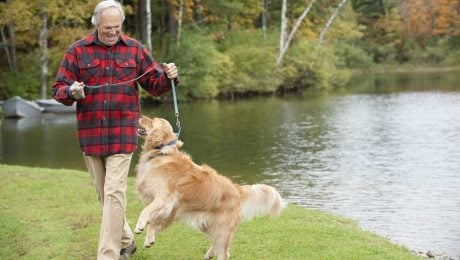 Seniors Who Own Dogs Are Healthier Than Those Who Don't