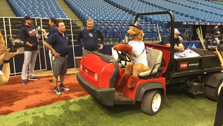 Max sits on a cart on the field with his paws on the wheel.