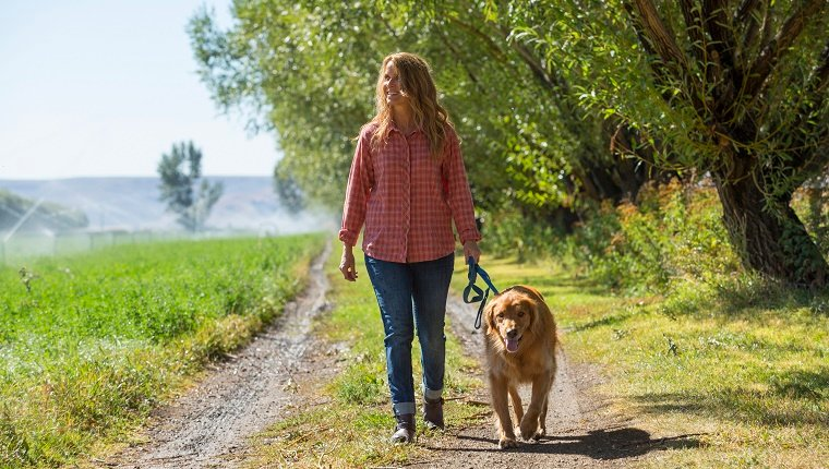 Caucasian woman walking dog on dirt path