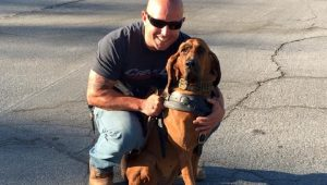 Hero K9 Bloodhound Tracks And Finds Kidnapped Girl In The Woods