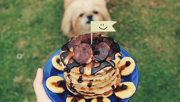 Cropped Image Of Person Holding Fresh Chocolate Sauce On Banana Pancake In Plate