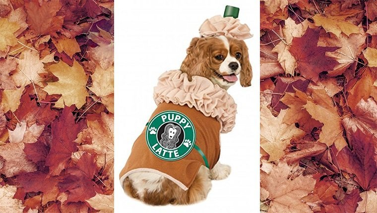 dog-costumes-2016-latte