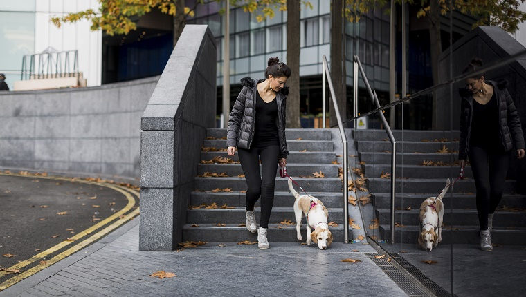 UK, London, woman and her dog walking in the city
