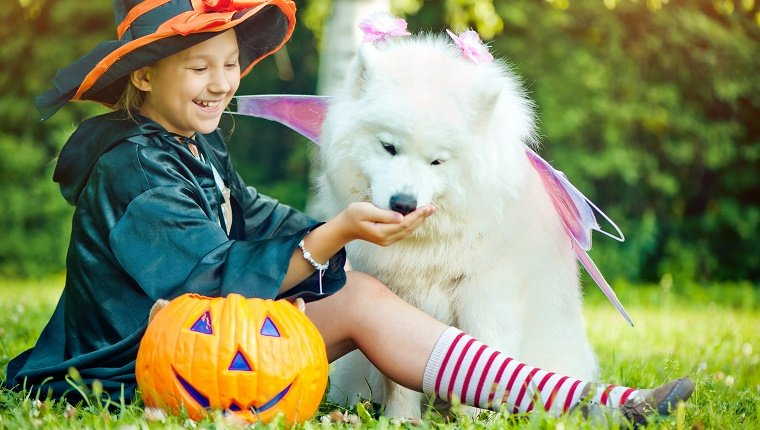 Kid and dog trick or treating
