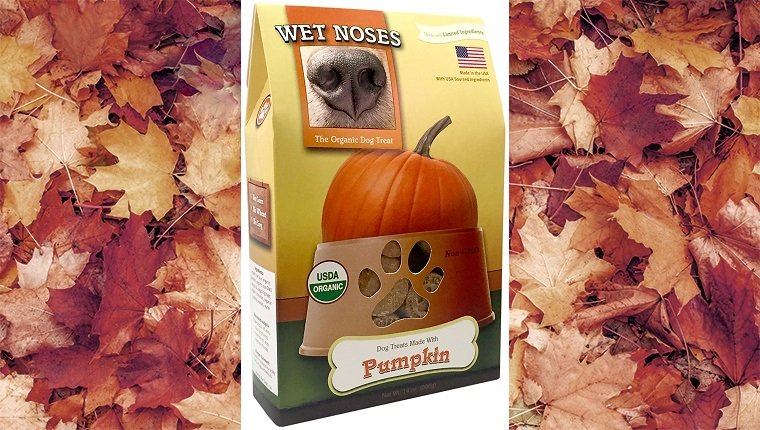 halloween-dog-treats-wet-noses