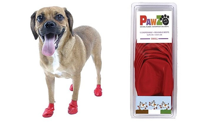 essential-holiday-travel-items-dogs-3
