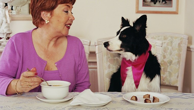 Mature woman looking at sheepdog at dining table