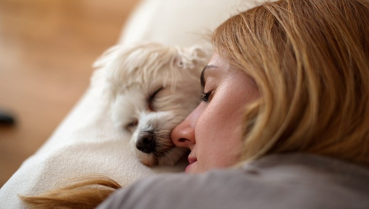Maltese dog on bed sleeping next to a beautiful blonde girl