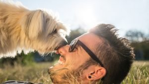 10 Ways Dogs Make Us Happy