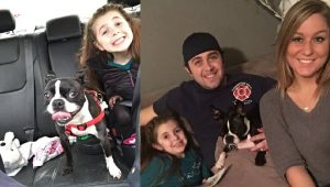 10 Emergency Responders Who Adopted Dogs They Fell In Love With On The Job