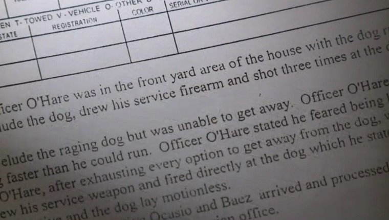 family-dog-killed-by-police-3