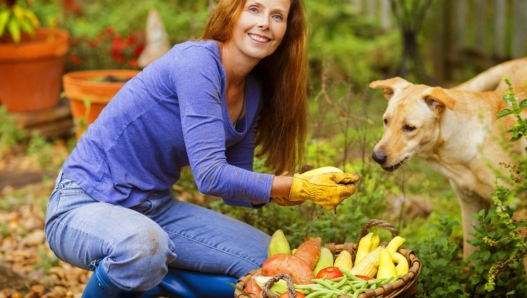 Mature woman in her garden with a table full of garden vegetables.
