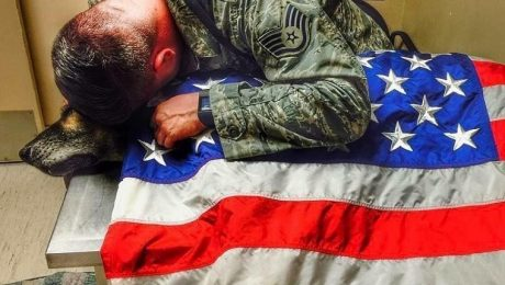 Heartbroken Soldier Lays American Flag On His Military Dog Partner's Body As He Passes Away