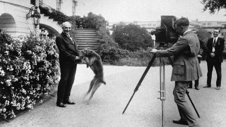 Presidents Day: 5 Stories About Presidential Dogs Misbehaving