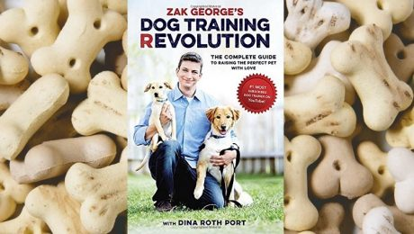 10 Top Rated Classic Dog Training Books