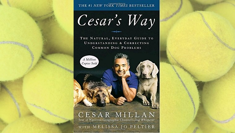 top-rated-dog-training-books-4
