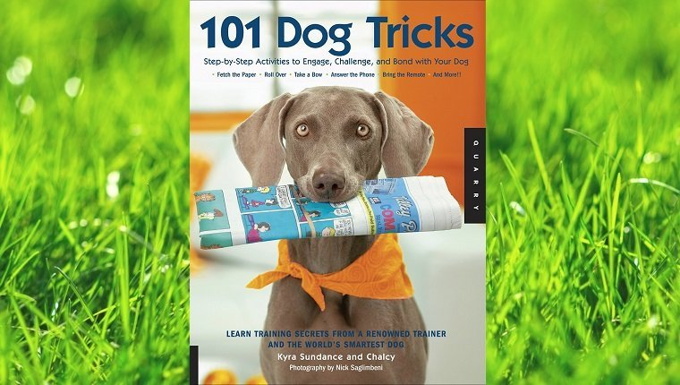 top-rated-dog-training-books-6