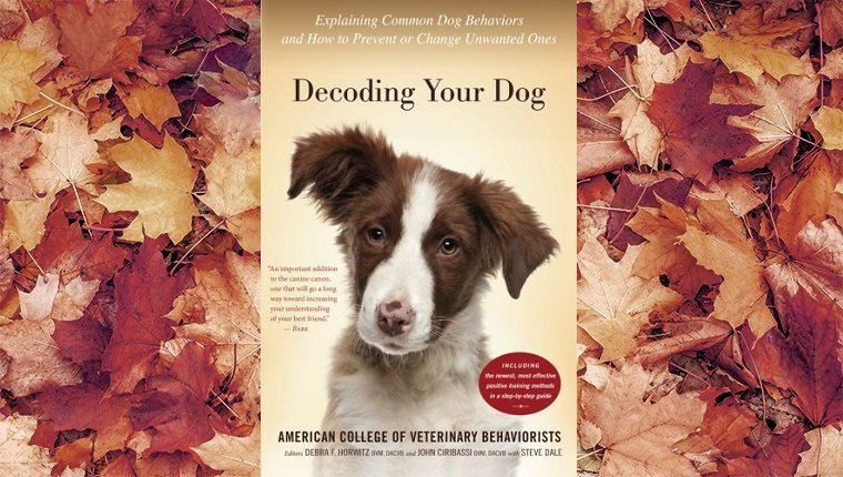 top-rated-dog-training-books-7