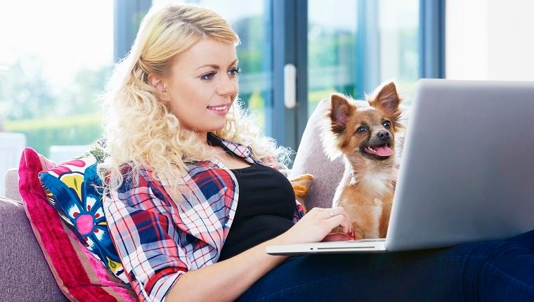 woman and dog with laptop on sofa