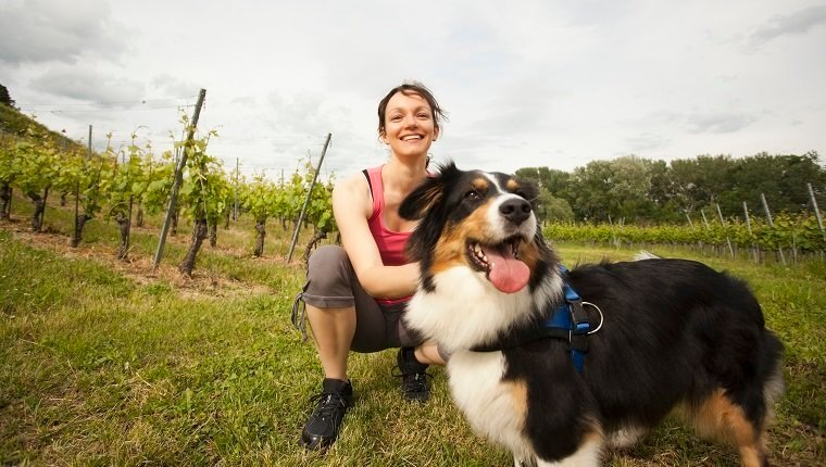 Caucasian woman petting dog in vineyard