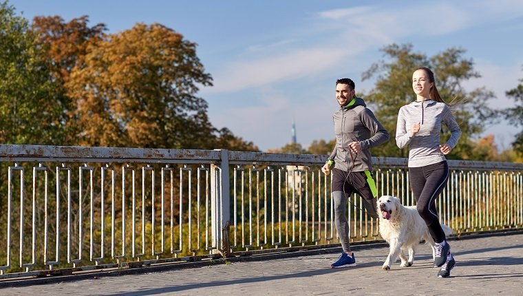 3b5c004c44152 fitness, sport, people and lifestyle concept - happy couple with dog  running outdoors