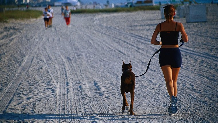 female jogger & dog on beach, fl