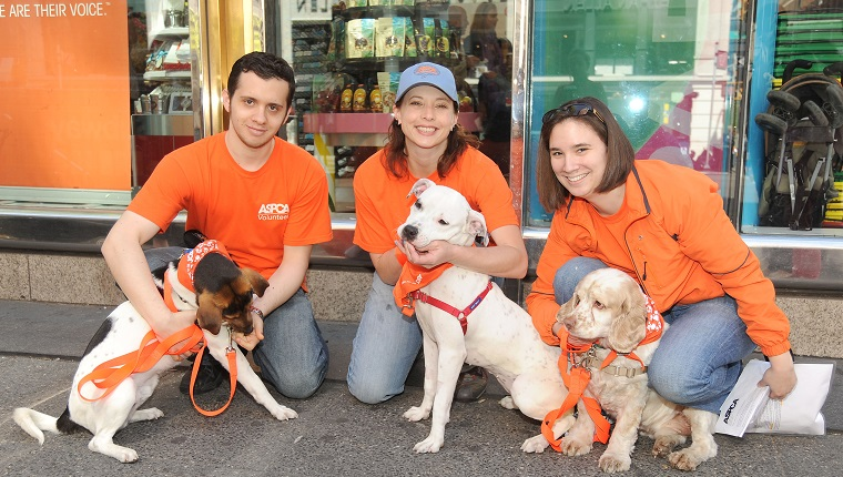 "NEW YORK, NY - APRIL 24: (L-R) Emery the Dog, Steve Krakowski, Nicole Stratton, Spirit the Dog, Michael the Dog and ? attend DYLAN'S CANDY BAR hosts ""Sweet Adoptions"" for The ASPCA at Dylan's Candy Bar on April 24, 2010 in New York City. (Photo by BILLY FARRELL/Patrick McMullan via Getty Images)"