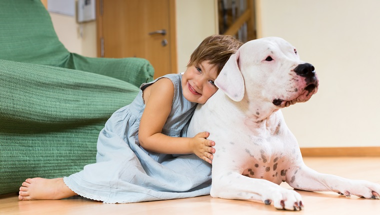 Happy girl toddler on the floor with dogo Argentino