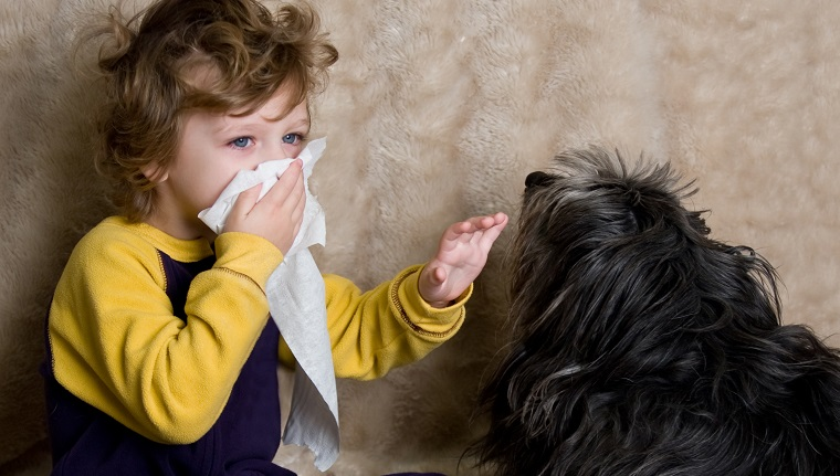 Child allergic to dog. To see more of this model: