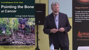 Book Review: Dogs And Cancer: Pointing The Bone At Cancer