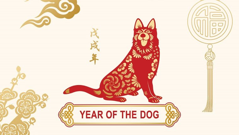 Chinese Zodiac 2018 The Year Of The Dog And What It Means Dogtime