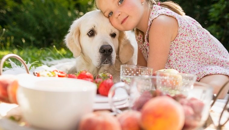 Girl sitting with golden retriever on blanket in garden having picnic