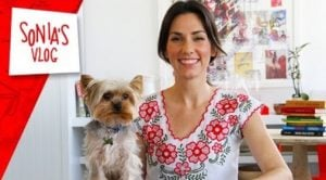 Travel Tips: Training Your Pet For Travel