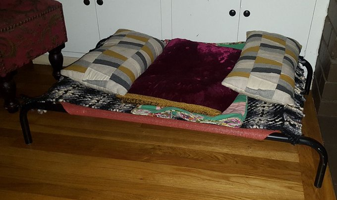 Dog Bed You Put Pillows Inside