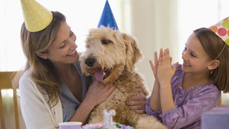 Dog Years: How To Convert Your Dog's Age To Human Years