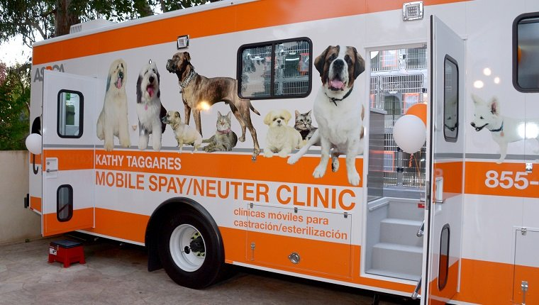 BEL AIR, CA - OCTOBER 20: ASPCA mobile spay/neuter clinic truck parked at ASPCA's Los Angeles Benefit on October 20, 2016 in Bel Air, California. (Photo by Matt Winkelmeyer/Getty Images for ASPCA)