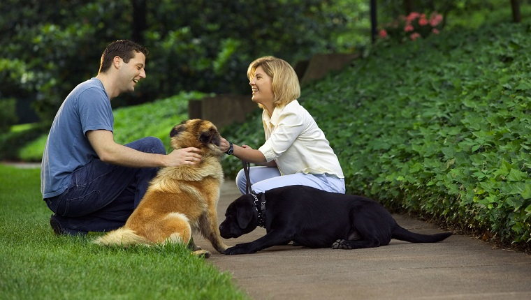 Couple with dogs outdoors