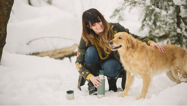 A woman stroking a golden retriever in woodlands in winter.