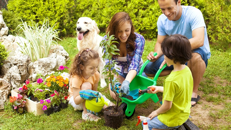 Family with two children and dog planting flowers in a back or front yard.