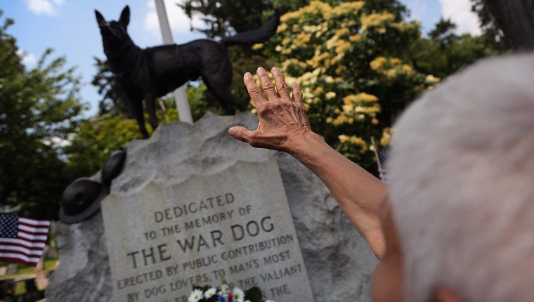 Remembering Service Dogs Memorial Day