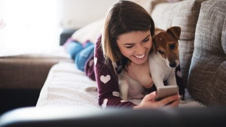 Social Petworking Month: What Is Dog Sharing?