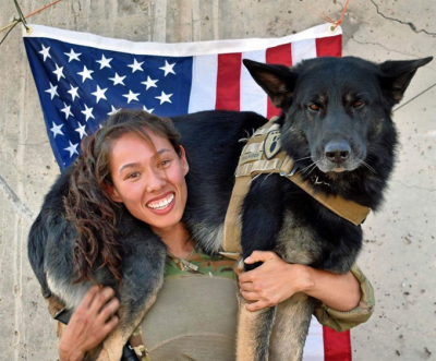 30 Military Dogs Protecting Your 4th Of July [GALLERY]