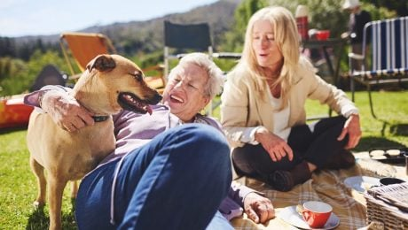 National Picnic Month: 9 Tips To Have A Fun, Safe Picnic With Your Dog