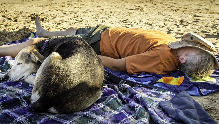 A woman and her dog napping on the shore of Lake Michigan