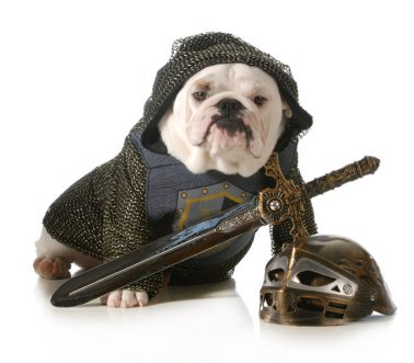 Which Dog Groups Make The Best D&D Classes?