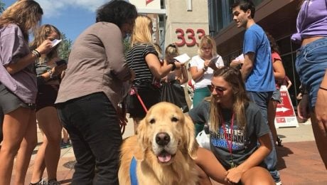 Pups To The Polls: Therapy Dogs Encourage Young Voters To Register