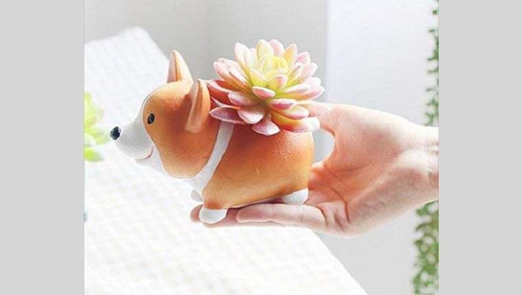 corgi succulent plant holder