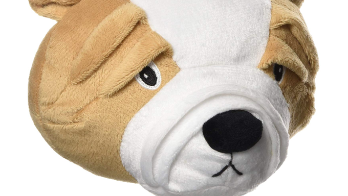 dog toy looks like dogs face