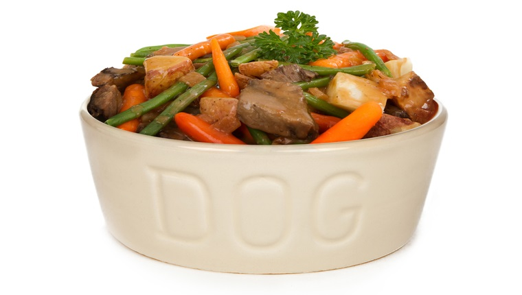 Heaping bowl of fresh homemade dog food - Beef stew with carrots and green beans